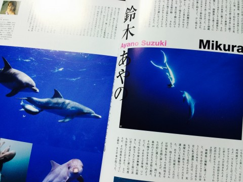 2014.3.10 月刊ダイバーイルカ御蔵島