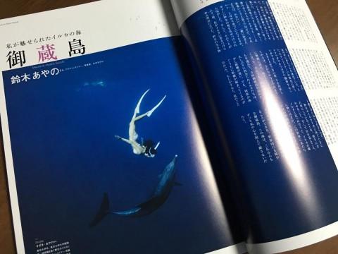 2016.4 月刊ダイバー 鈴木あやの 御蔵島イルカ