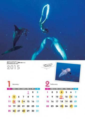 2015ドルフィンスイムカレンダー1.2月 Ayano Suzuki