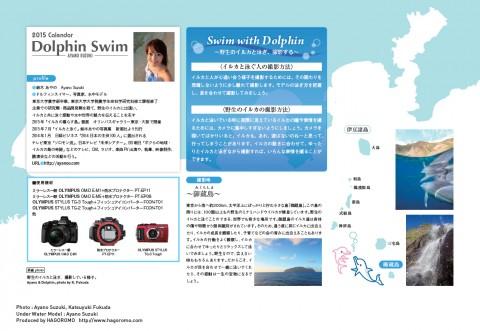 2015ドルフィンスイムカレンダー裏表紙 Ayano Suzuki