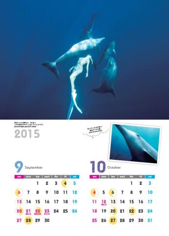 2015ドルフィンスイムカレンダー9.10月 Ayano Suzuki