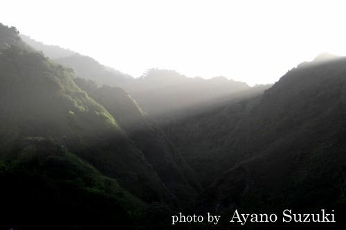 朝の光 小笠原母島
