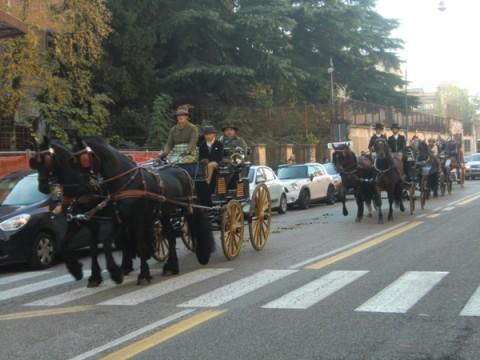 ヴェローナ国際馬見本市