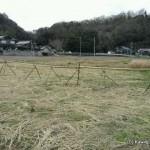 空になった稲架と振りまかれた藁の図