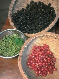 Mulberry, Gumi and Sansho (Japanese Pepper)