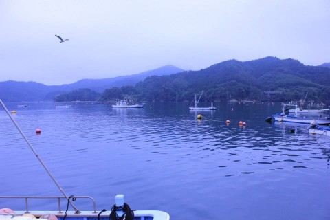 kesen9_wan